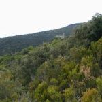 Serraboneの全景