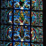 Chartres エッサイの樹