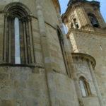 Estella / San Miguel 後背部